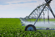 irrigation_190px.jpg