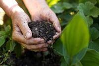 garden_soil_200px.jpg