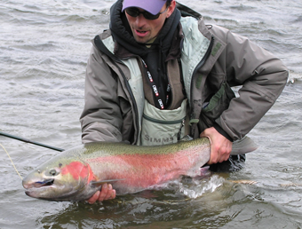 thompson_steelhead_c_r.png