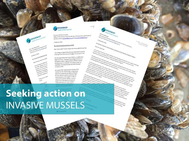 TR_SWC/Action-on-Mussels-1890px.jpg