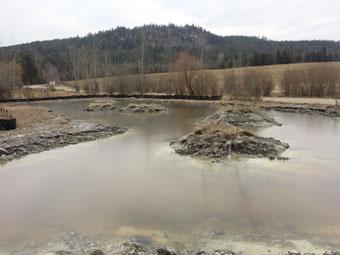 swc_gardom_wetland_340px.jpg