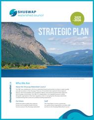 Read SWC's 2021-2026 Strategic Plan