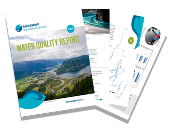 Read SWC's 2019 Water Quality Report