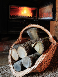 wood_stove_and_firewood_200px.jpg